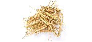 Camelina straw